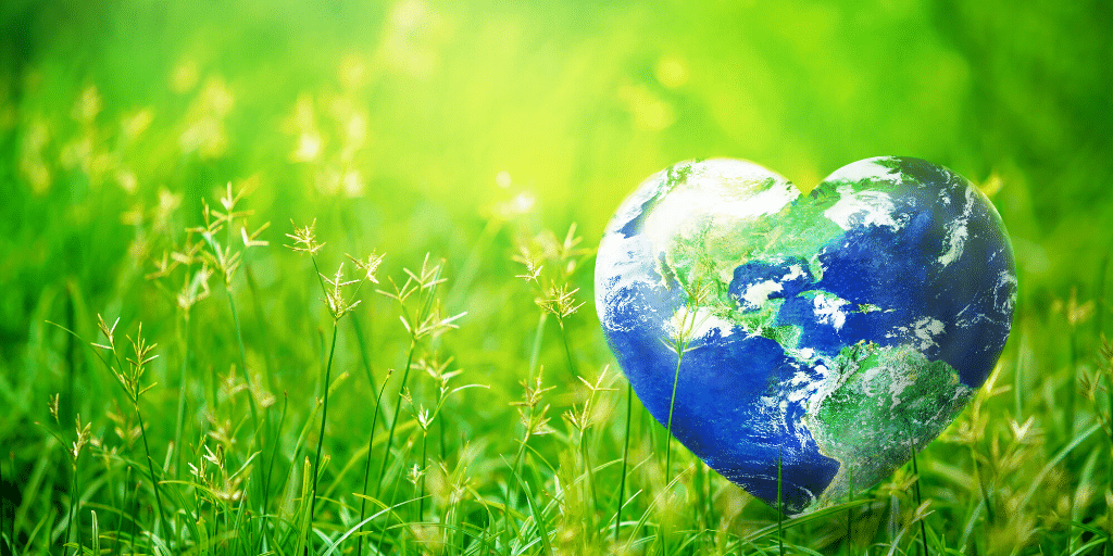 Earth Day in Phoenix is almost here. This year, instead of finding ways to volunteer in Phoenix, use these tips to be more earth conscious from home!